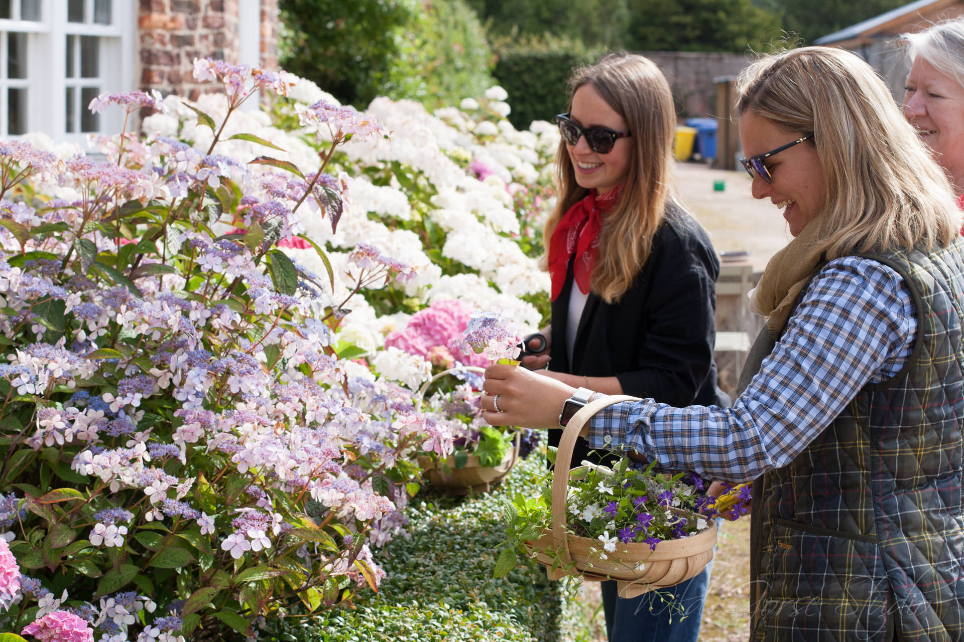 Picking Flowers in Gordon Castle Walled Garden