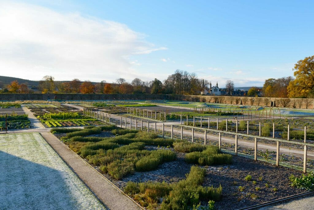 Gordon Castle Walled Garden Winter 2017