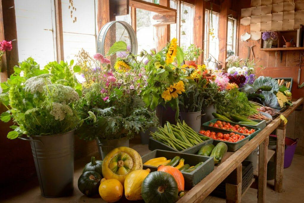 Fresh produce at Gordon Castle Walled Garden