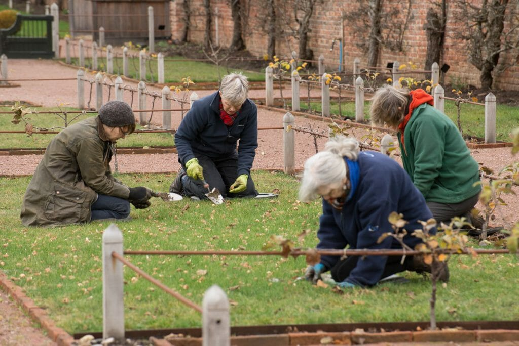 Volunteers at Gordon Castle Walled Garden