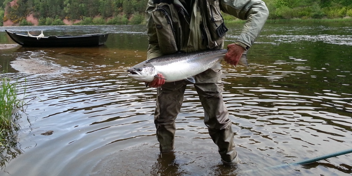 Gordon Castle Fishing River Spey