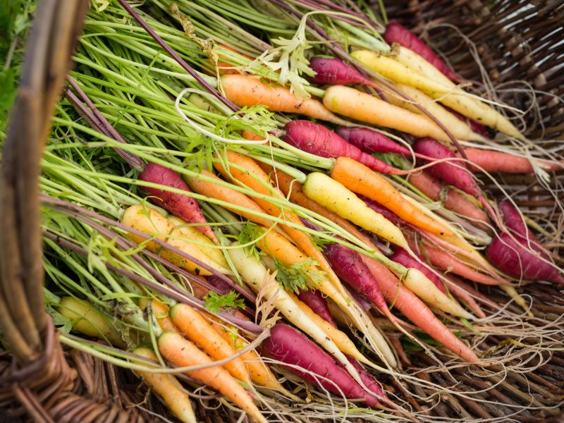 Heritage Vegetables