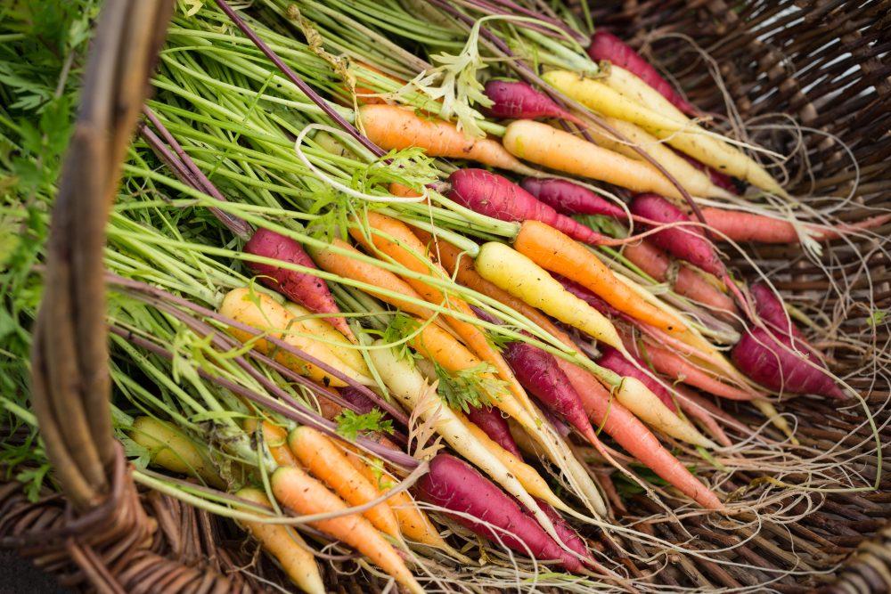 Heritage Vegetables