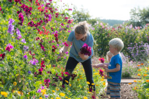 The Flower Farmes Big Weekend